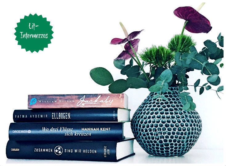 Rückblick Februar + Leseliste März 2018